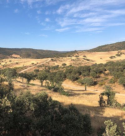 La Naturaleza del Paisaje Montes de Toledo