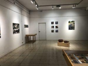 Exposición La Naturaleza del Paisaje