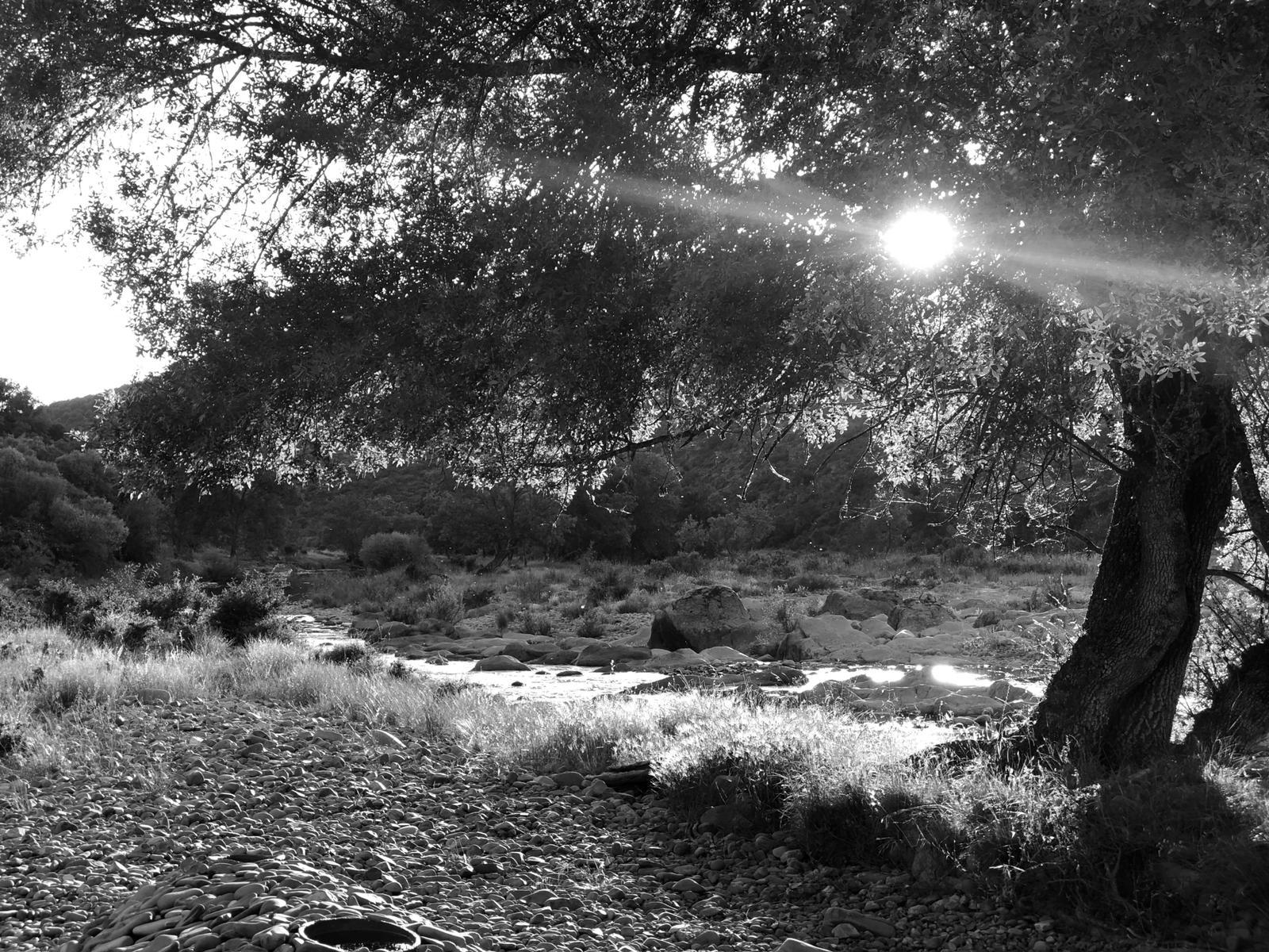 Conversaciones con el Paisaje - Montes de Toledo - La Naturaleza del paisaje