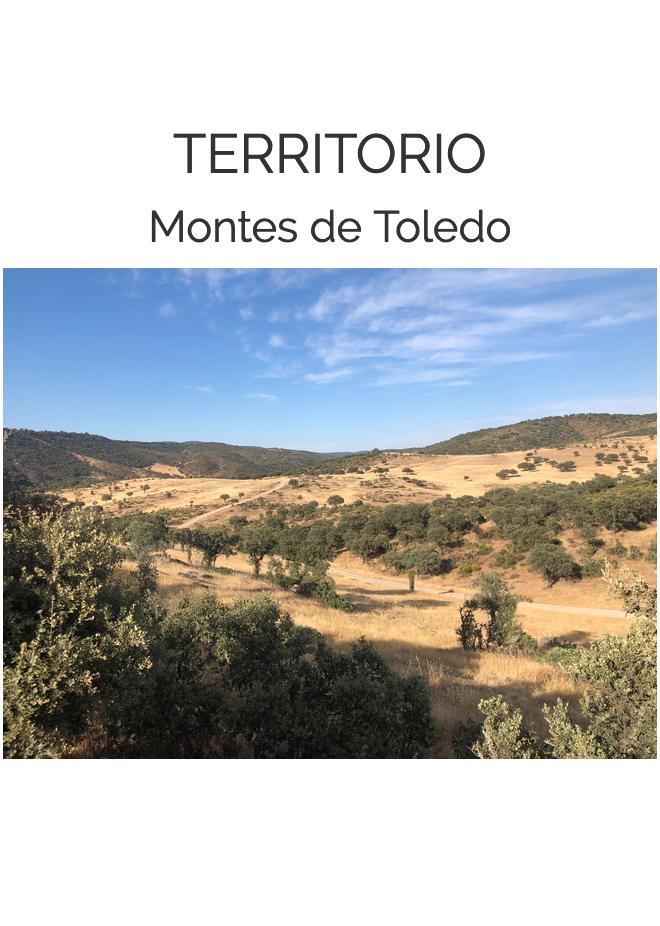 La Naturaleza del Paisaje - Montes de Toledo