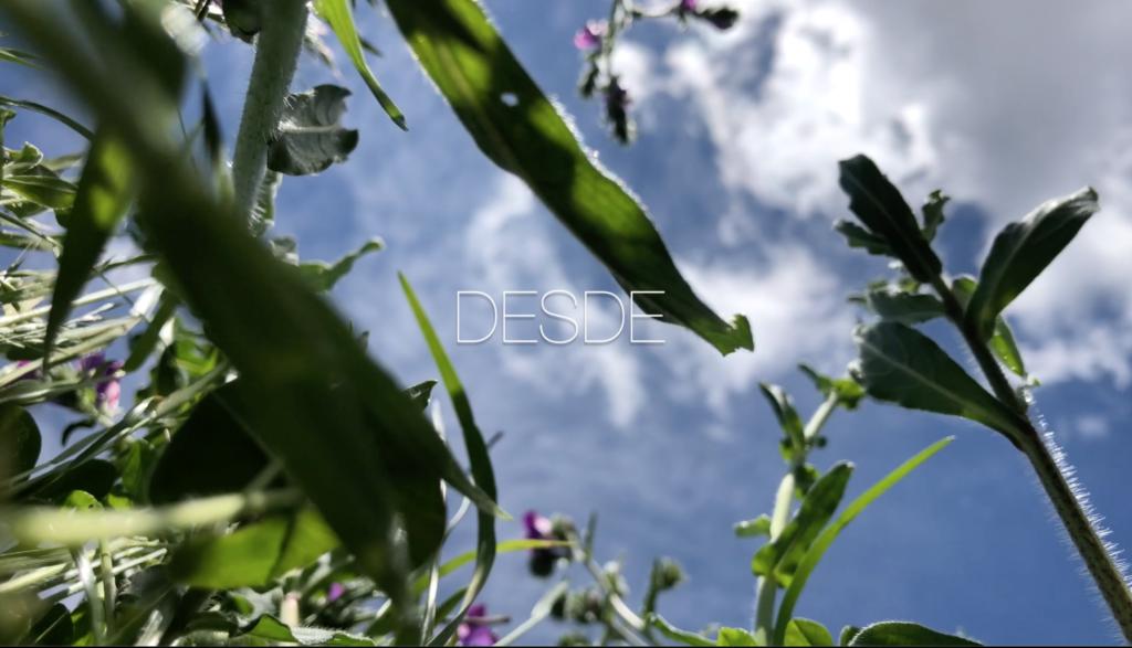 Vídeo piensa() paisaje